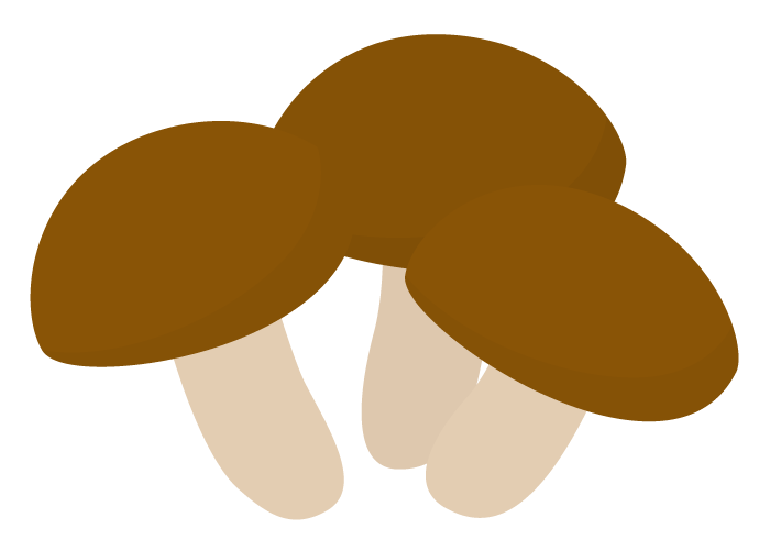 シイタケ(椎茸)
