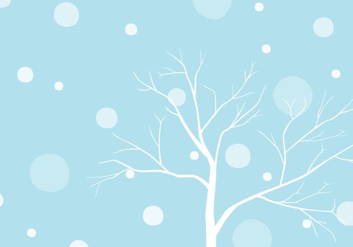 冬の風景(枯木と雪)