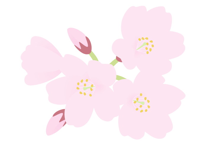 エドヒガンザクラ(江戸彼岸桜)