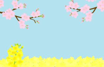 サクラ(桜)とナノハナ(菜の花)