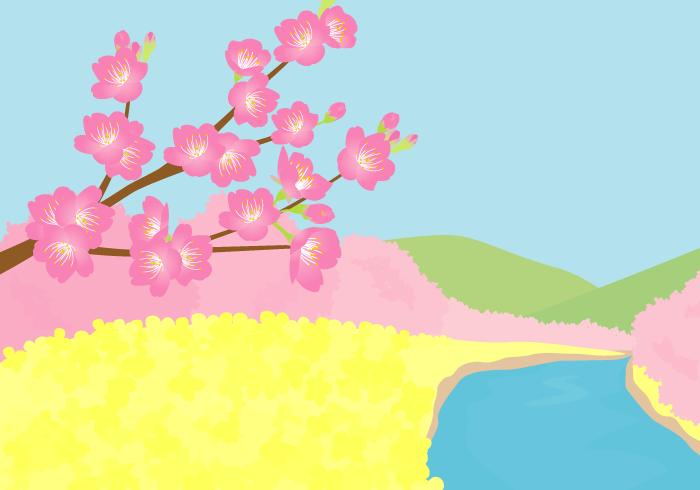春の風景(川沿いのサクラ)