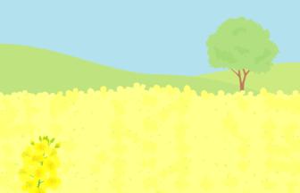 春の風景(ナノハナ)