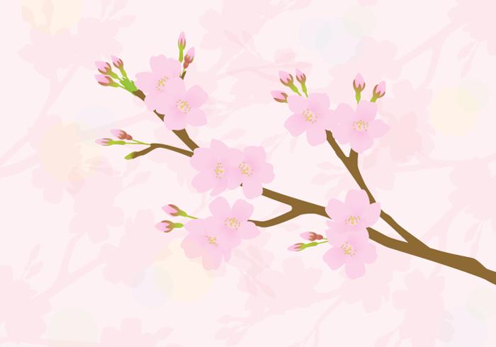 春の風景(サクラ)