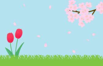 春の風景(サクラとチューリップ)