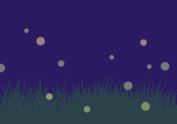 ホタル(蛍)の光
