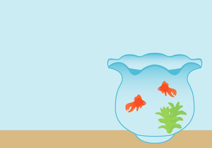 キンギョ(金魚鉢)