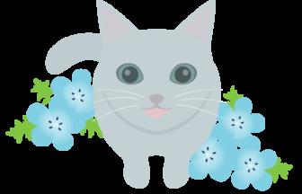 ネコ(猫)