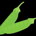 サヤエンドウ(莢豌豆)